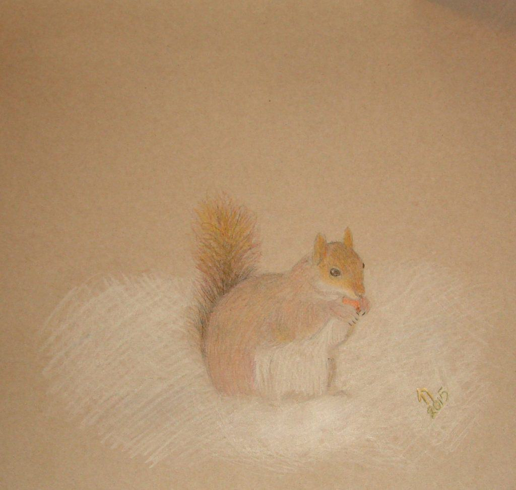 New Year Squirrel