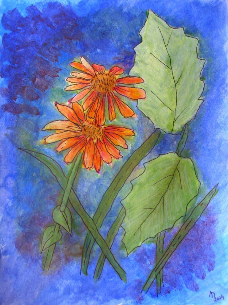 Floral Challenge - orange flowers in acrylics on paper