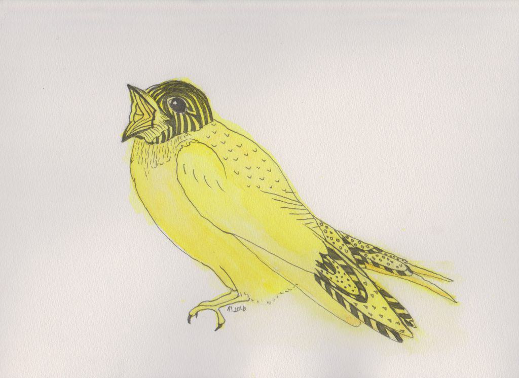 Strange Birds 6 Yellow Soprano Swallow