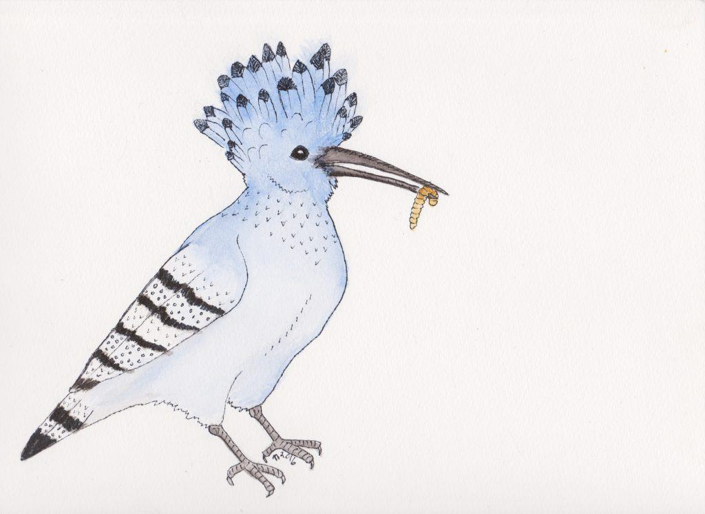 Strange Birds - 12 - Hungry Azure Hoopoe by Linda Ursin