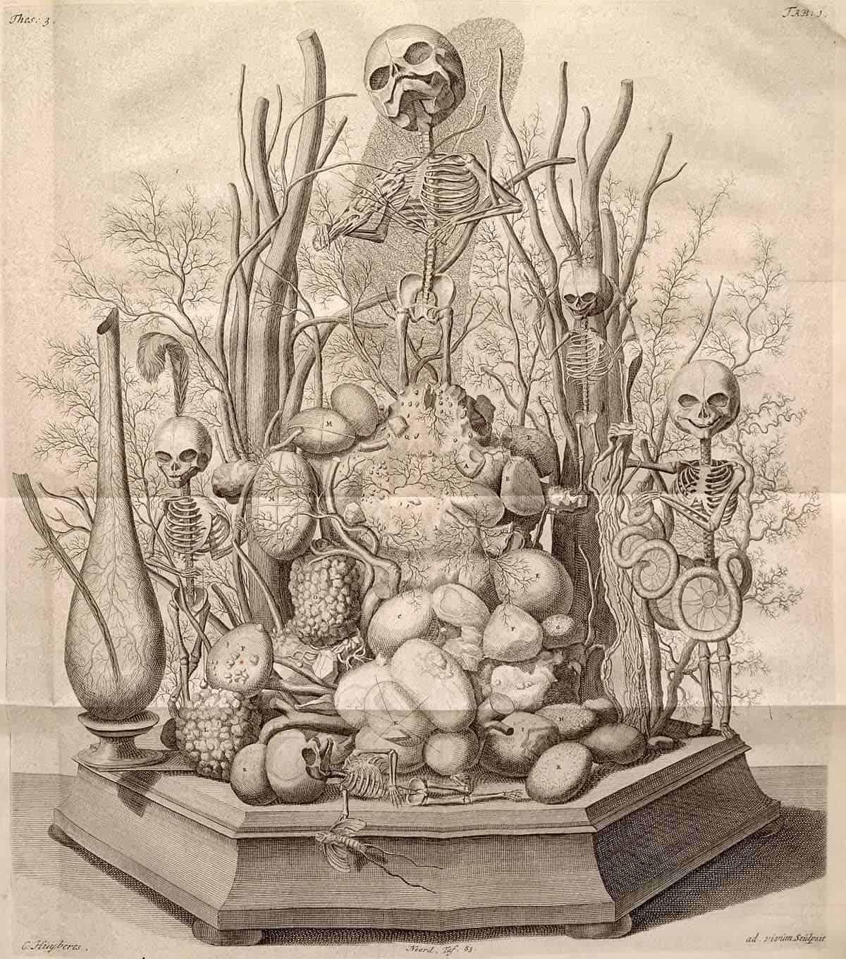 Cornelius Huyberts Vanitas-Diorama Frederik Ruysch 1721