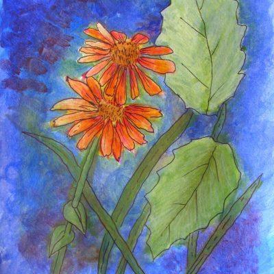 Blomstrete utfordring