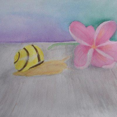 Sneglens visdom - Snegle og blomst