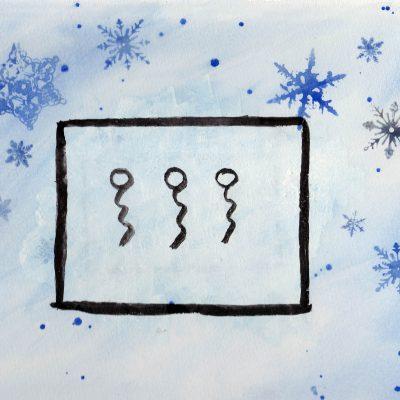 Vinter - 100 Hellige Symboler av Linda Ursin