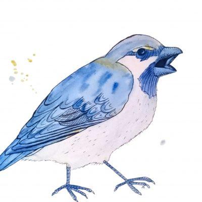 Strange Bird - 2 - Blå spurv med attityde