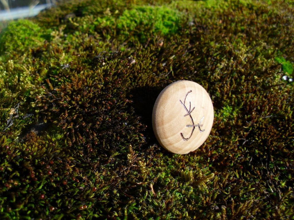 Pocket Rune to dream of a desired thing - Wooden Rune Amulet