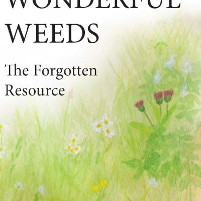 Wonderful Weeds – The Forgotten Resource by Linda Ursin / Utrolige Ugress - den glemte ressurs