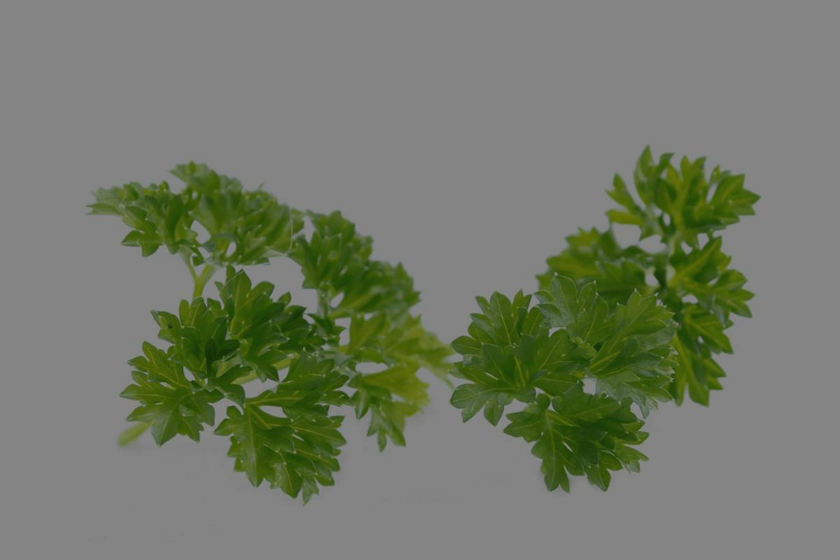 Herblore 102