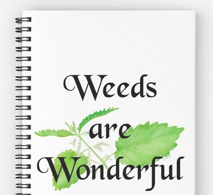 Weeds are wonderful - journal