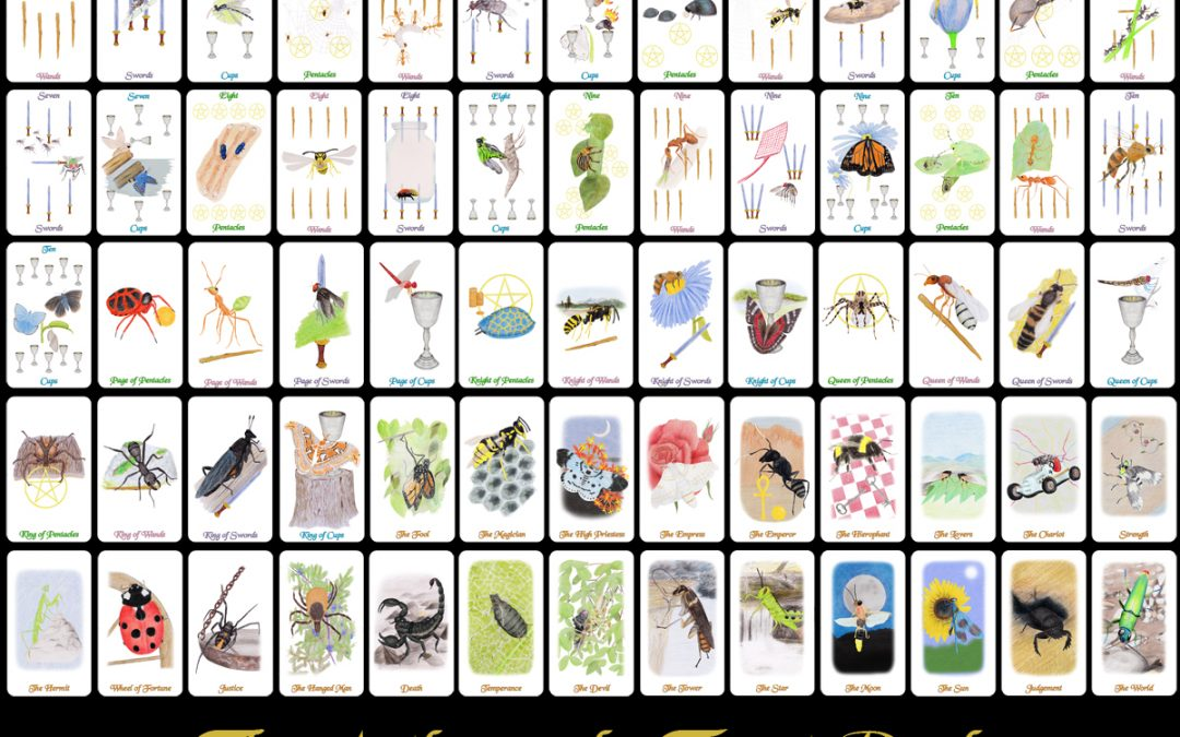 The Arthropoda Tarot Deck is Available