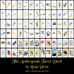 The Arthropoda Tarot Deck
