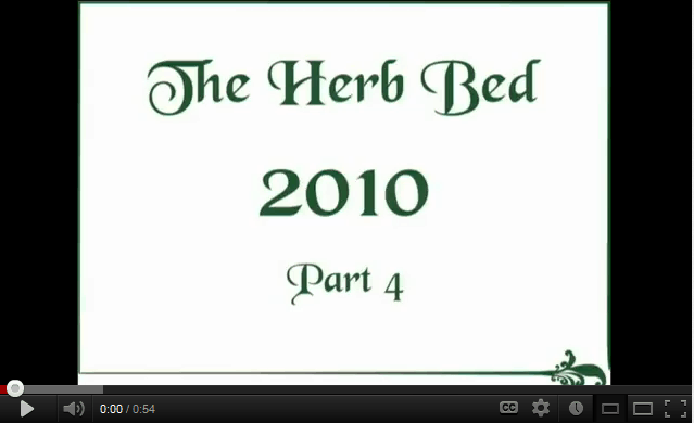 The herb bed 2010 – part 4