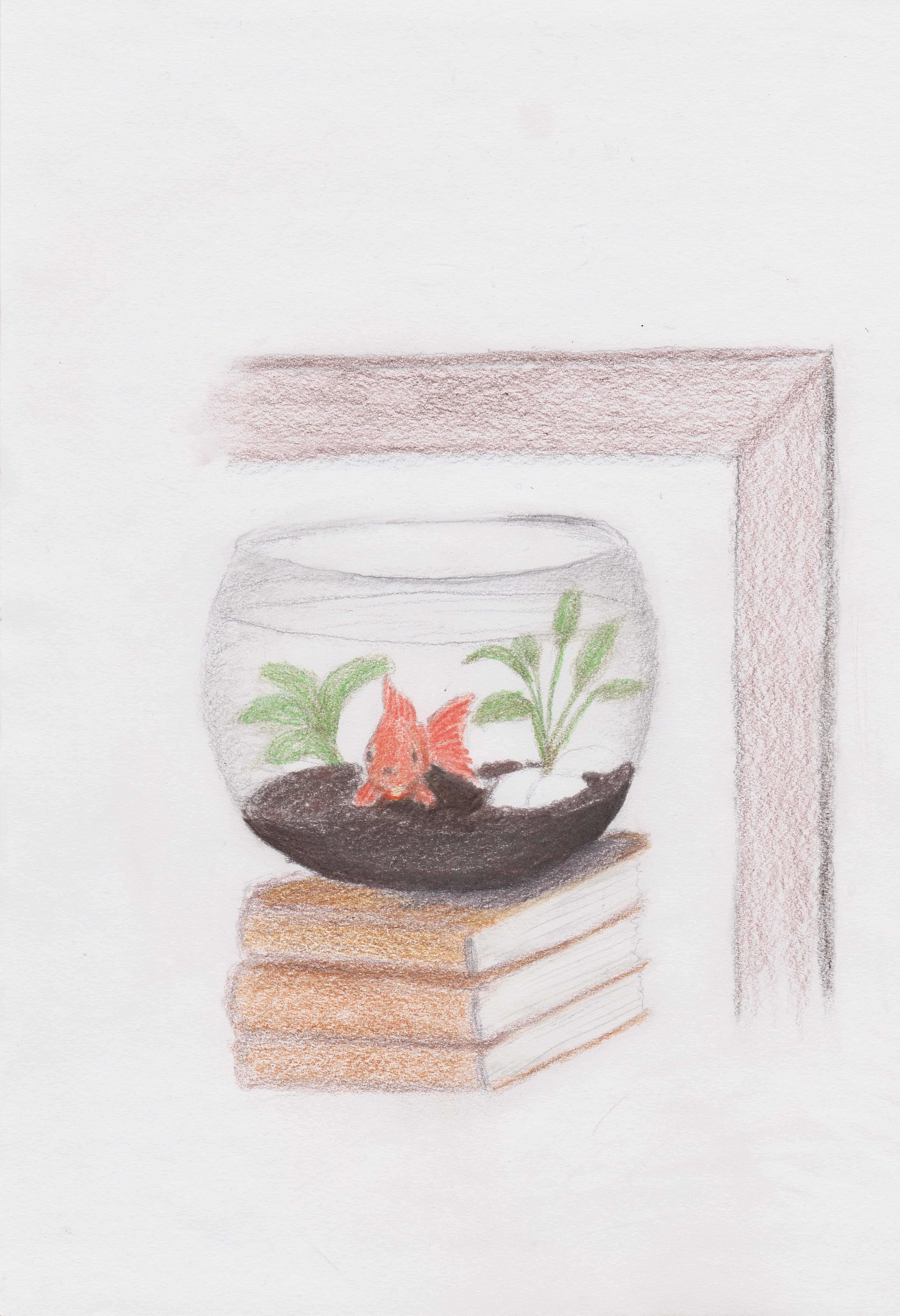 Goldfish Bowl on Books