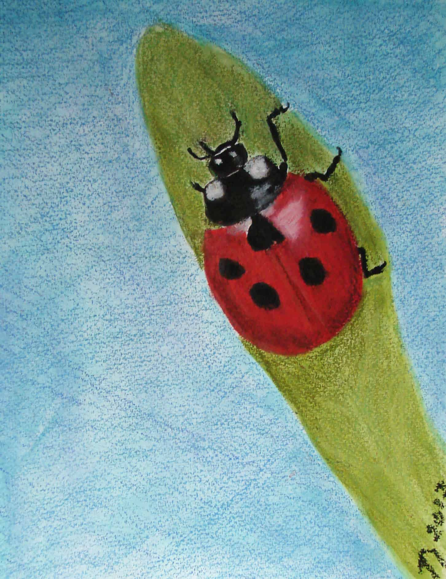 Sunday Art – Colorful Bugs