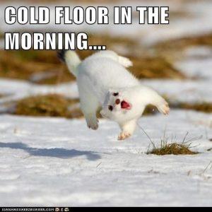 Cold Floor
