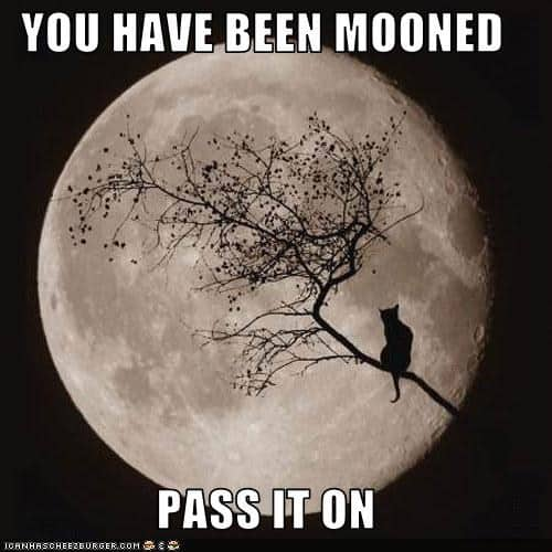 What's your favourite Full Moon celebration?