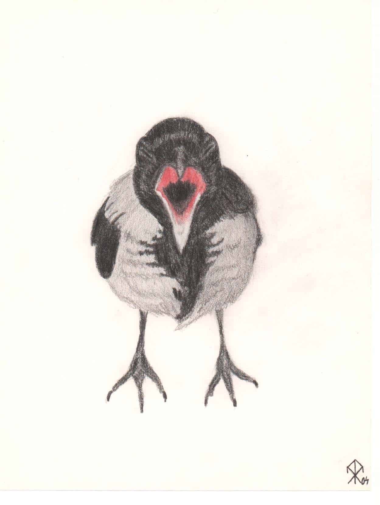 Re-drawing a 14-year-Old Drawing of an Angry Crow