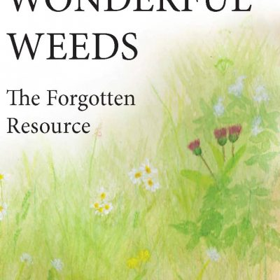 Wonderful Weeds – The Forgotten Resource