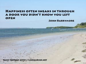 Happiness often sneaks in... - Sassy Sayings https://lindaursin.net