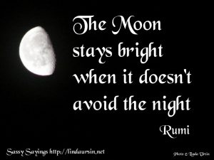 The Moon stays bright... - Sassy Sayings https://lindaursin.net