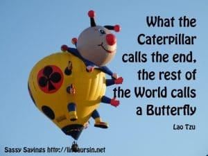 What the caterpillar calls the end... - Sassy Sayings - https://lindaursin.net