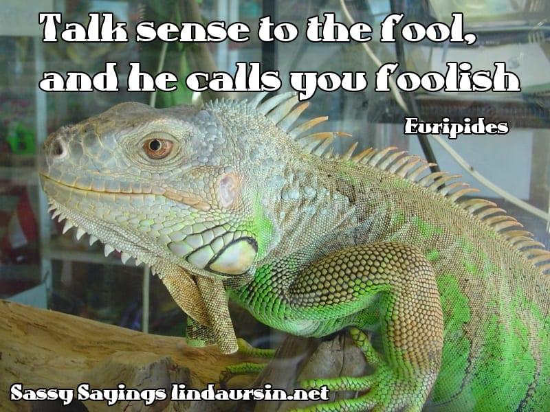 Talk sense to the fool, and he calls you foolish - Euripides