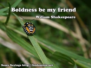 Boldness be my friend Sassy Sayings, bug style https://lindaursin.net #quotes #sassysayings