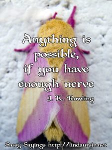 Anything s possible, if you have... Sassy Sayings, bug style https://lindaursin.net #quotes #sassysayings