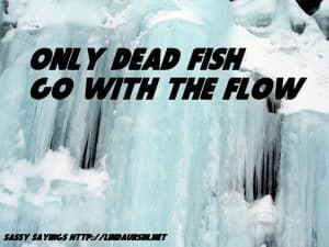 Only dead fish... - Sassy Sayings #quotes #sassysayings