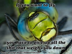 If you want to fly...Sassy Sayings https://lindaursin.net