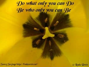 Do what only you... Sassy Sayings https://lindaursin.net