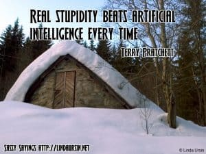 Real stupidity...Sassy Sayings in the snow https://lindaursin.net #quotes #sassysayings