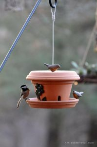 A bird eating from a bird feeder made from a flower pot and two dishes