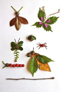 leaf bugs