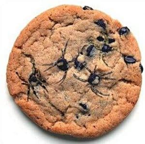 A picture of a chocolate chip cookie with very realistic spiders