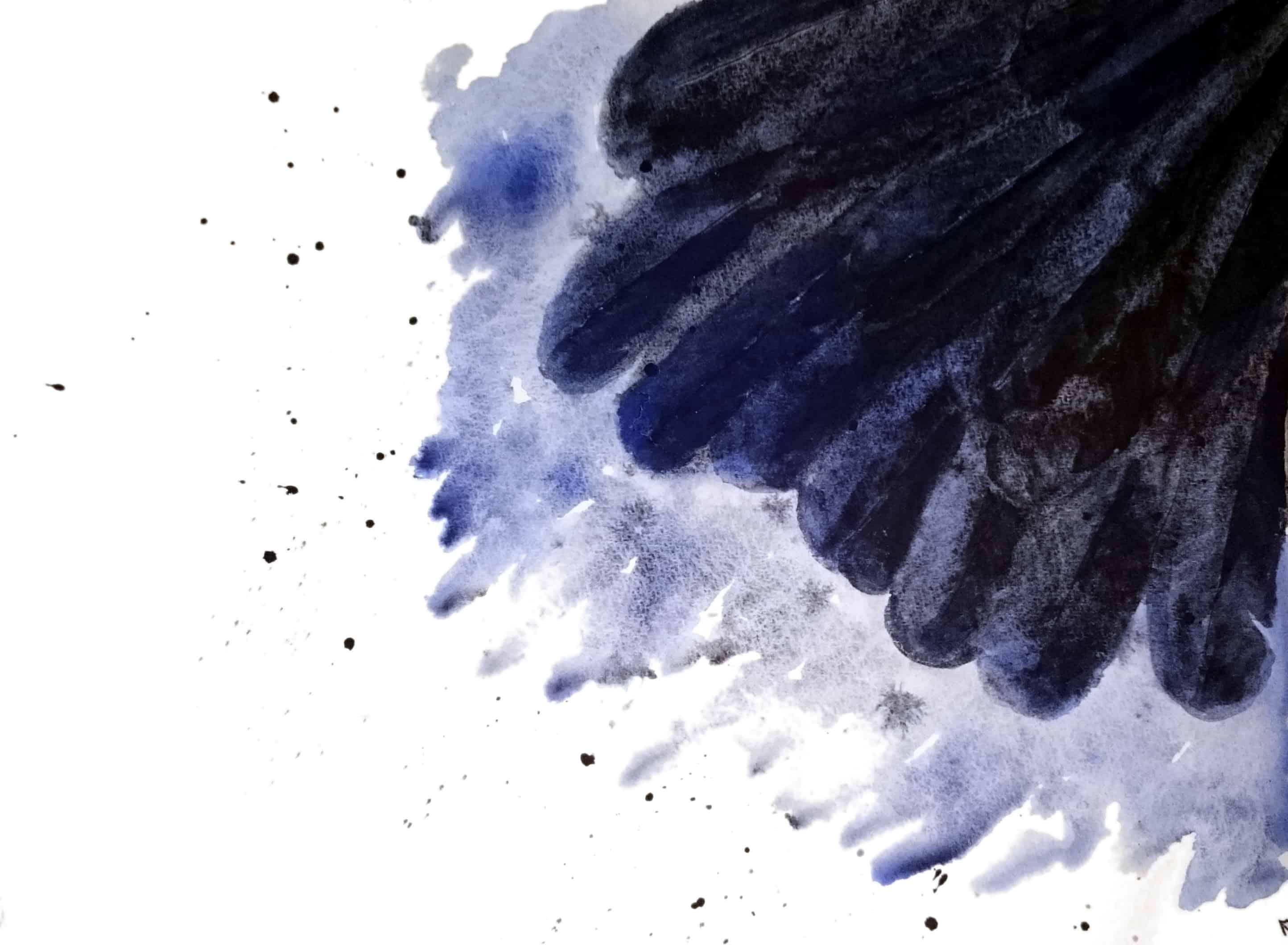 Raven Wing
