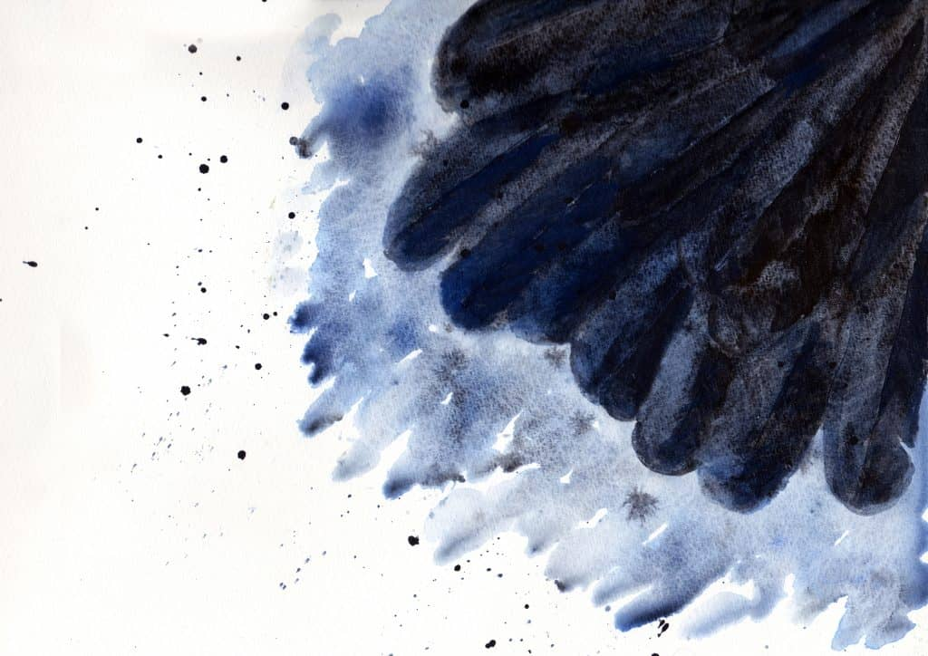 Raven Wing by Linda Ursin