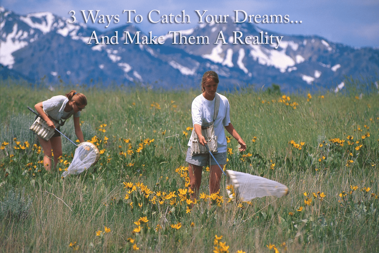 3 Ways to Catch Your Dreams by Ashley J. long