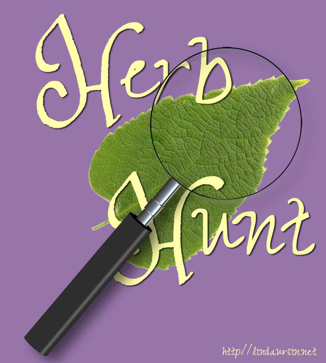 Herb hunt today and you can win a new prosperity amulet