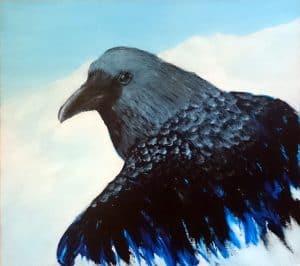 Raven Emerging, one of Linda Ursin's Bird drawings. wildlife paintings and Scandinavian wildlife paintings