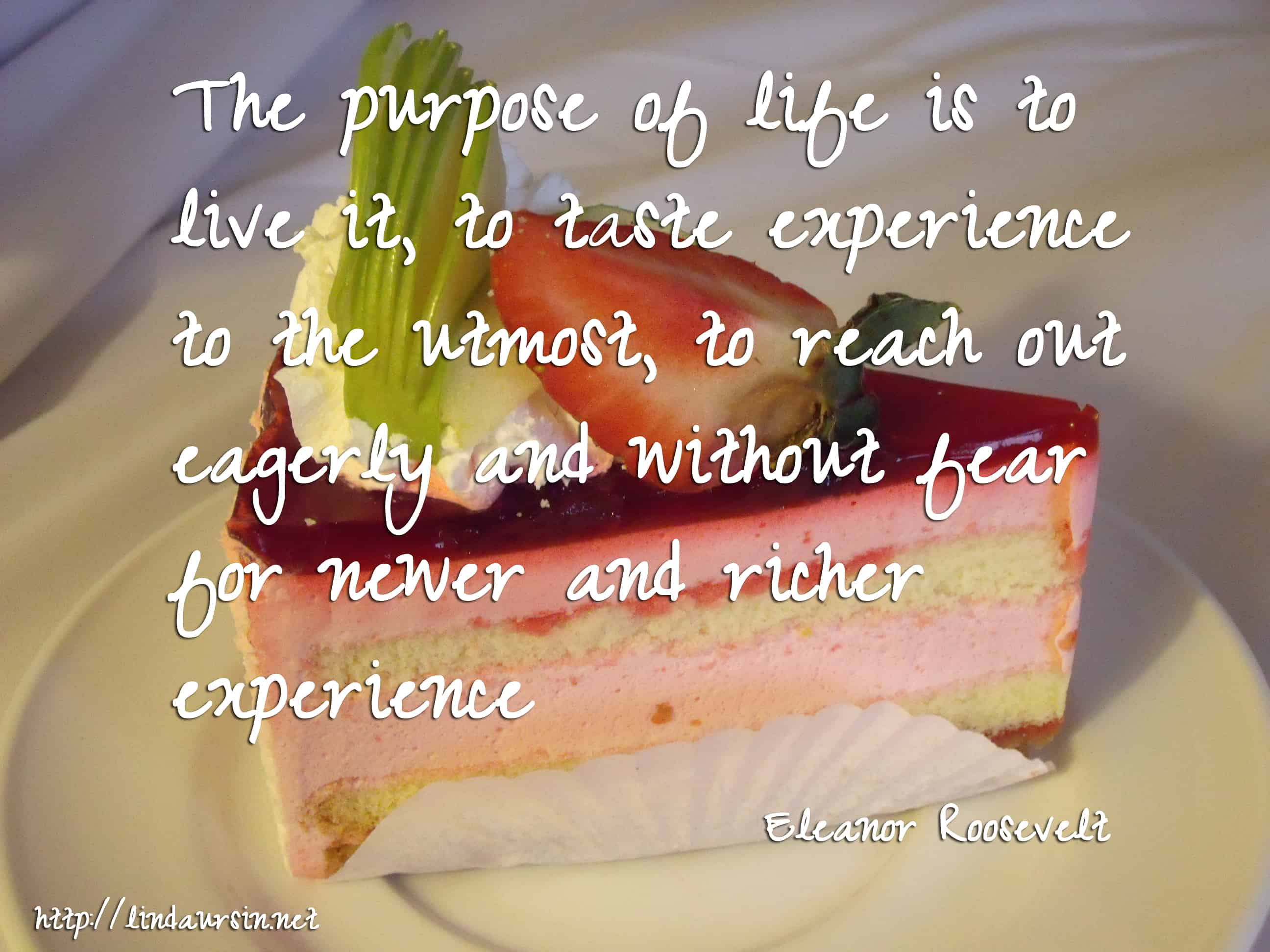 The purpose of life is to live it, to taste experience to the utmost, to reach out eagerly and without fear for newer and richer experience - Eleanor Roosevelt