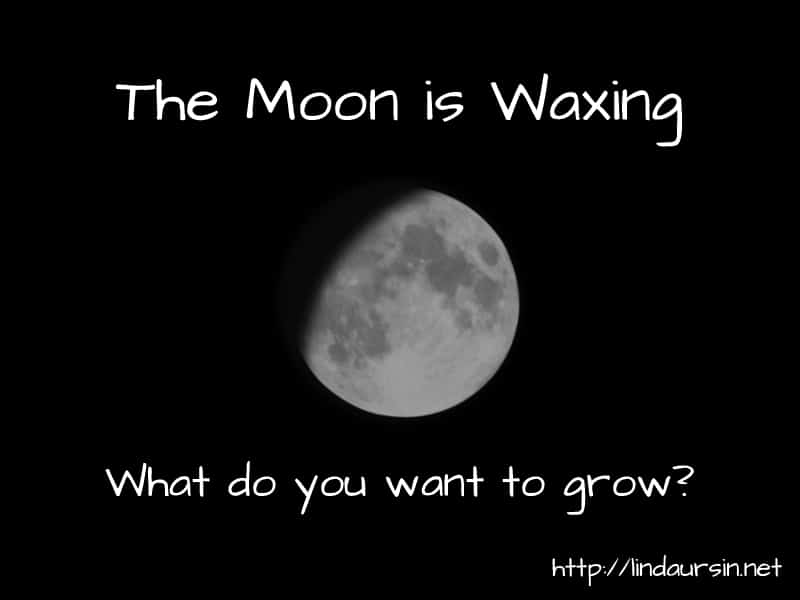 The Moon is waxing, time for growth