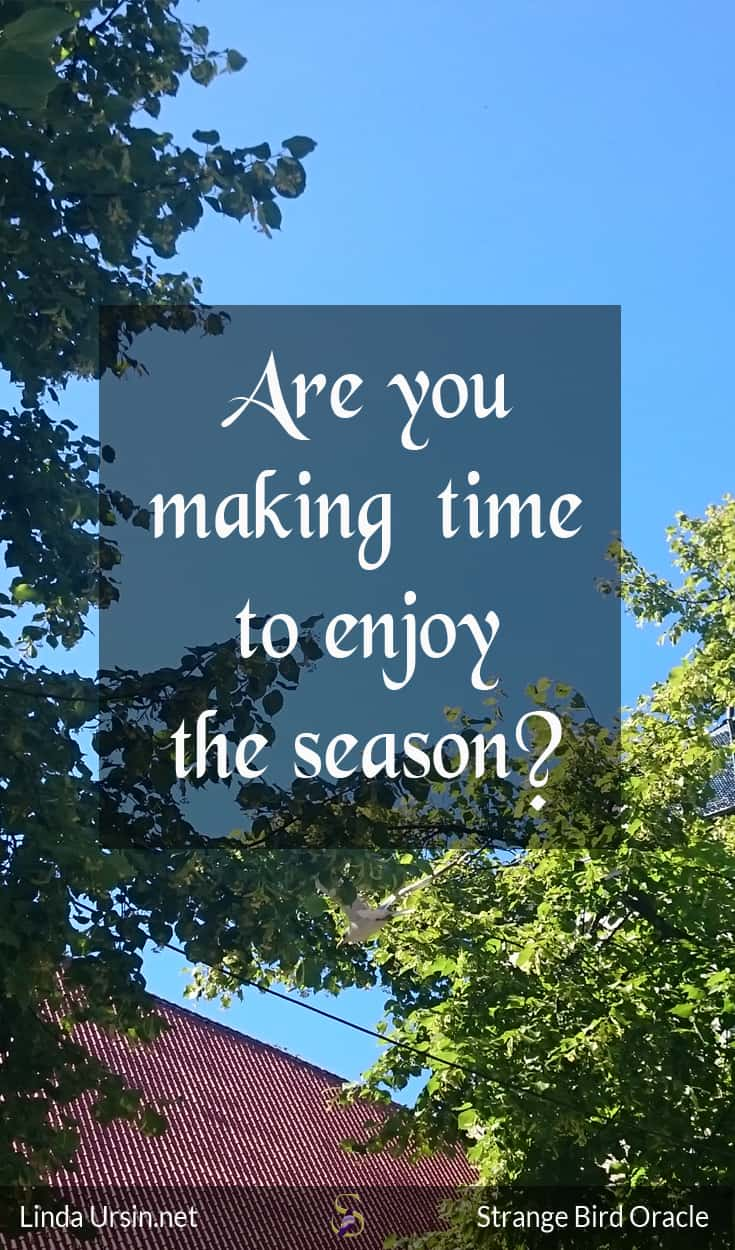 Are you making time to enjoy the season?