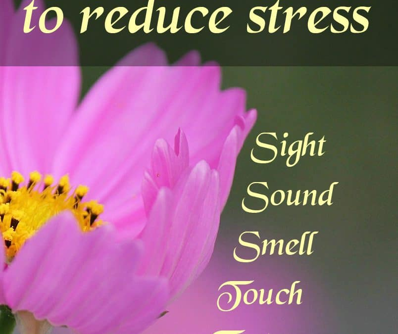 Engage your senses to get stress free