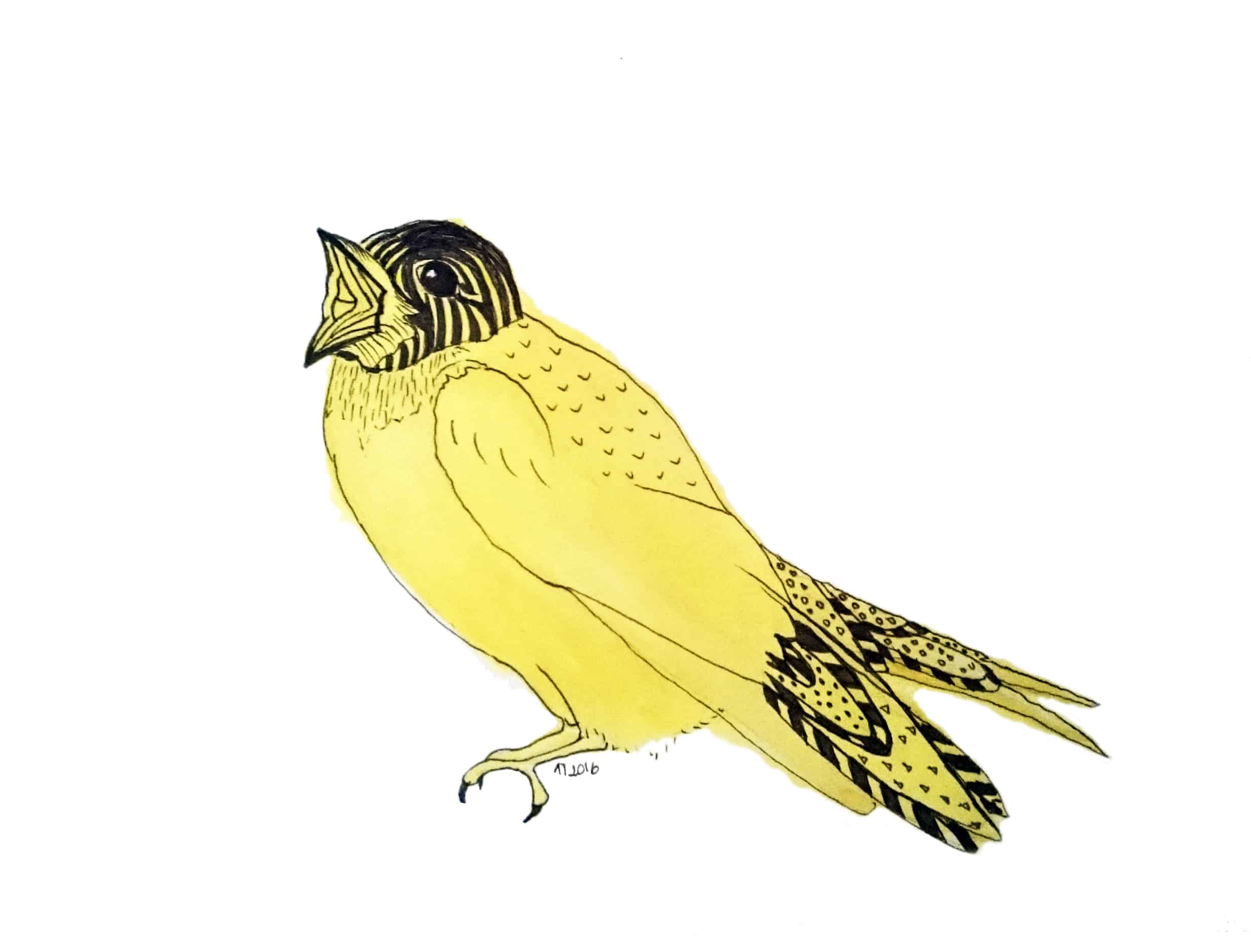 Strange Birds 6: Yellow Soprano Swallow by Linda Ursin