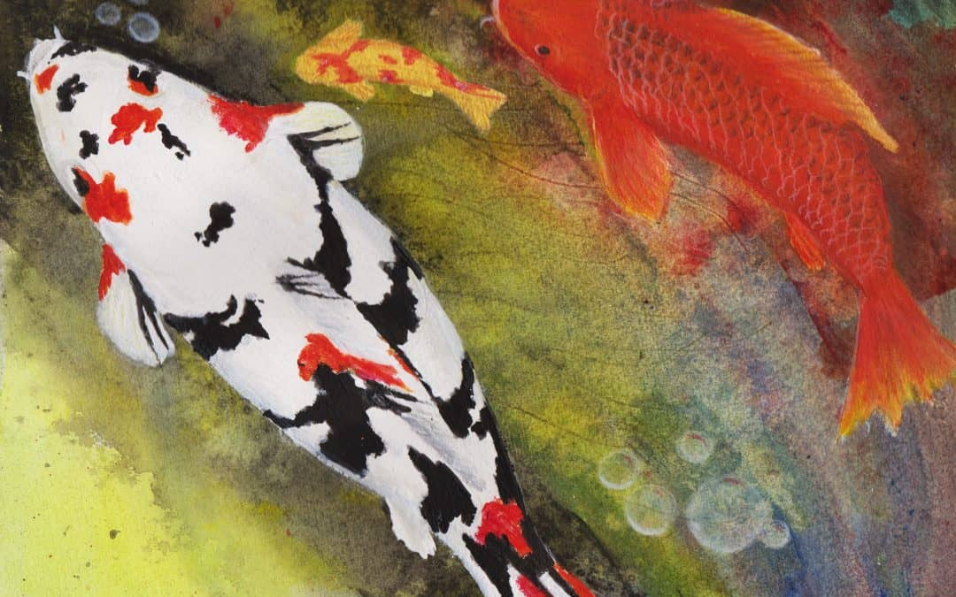 Painting of colorful koi fish swimming by linda ursin for Colorful pond fish