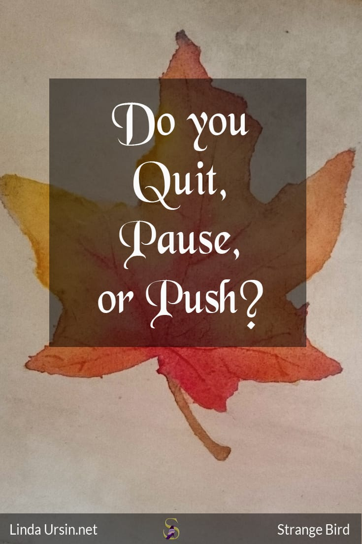 Do you quit, pause, or push?