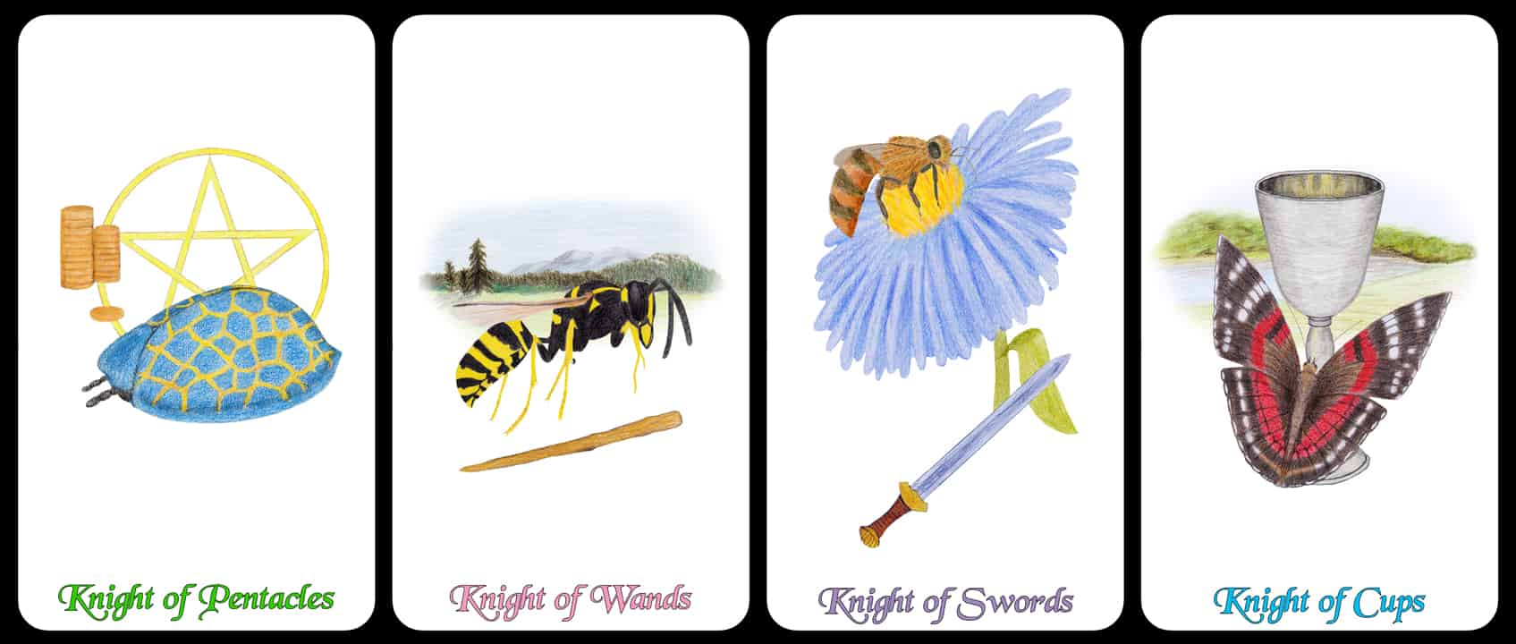 The Knights - The Arthropoda Tarot Deck by Linda Ursin