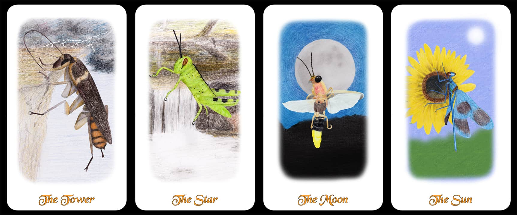 The Kings - The Arthropoda Tarot Deck by Linda Ursin