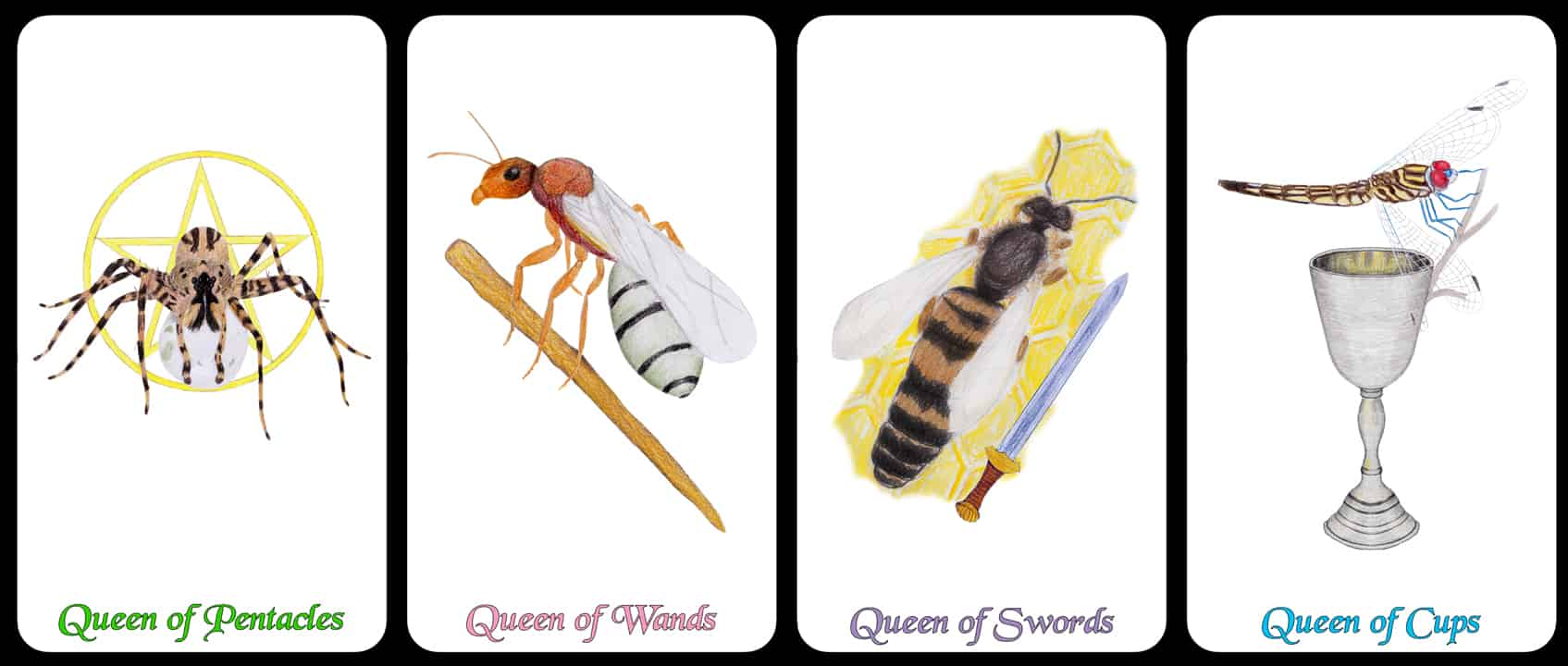 The Queens - The Arthropoda Tarot Deck by Linda Ursin